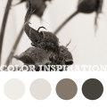 Color Inspiration #4