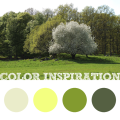 Color Inspiration #3