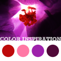 Color Inspiration #5