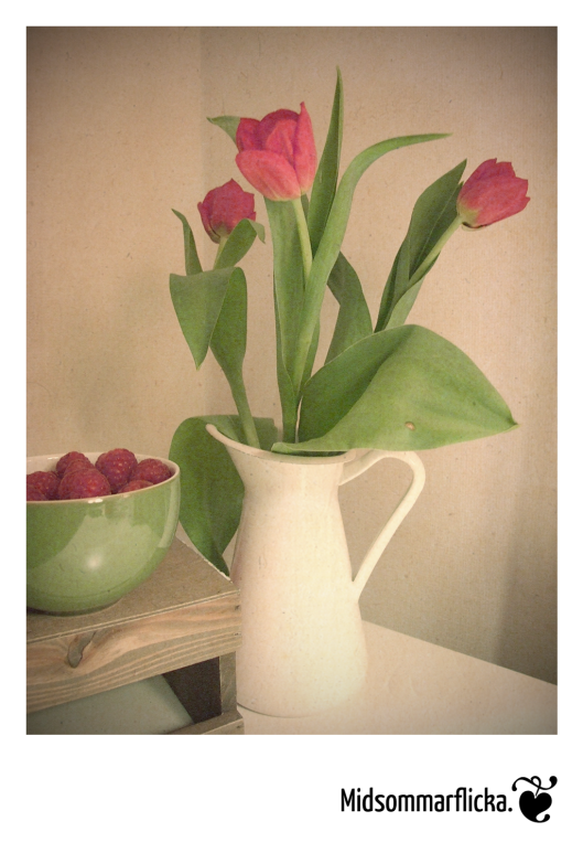 Raspberries & Tulips « Midsommarflicka | So, it was weekend. And I was bored.