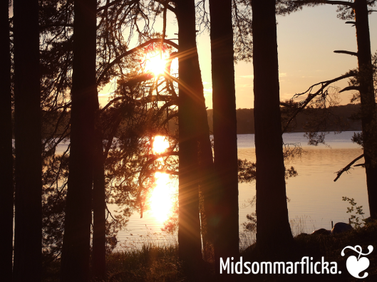 Scandinavia in a Snapshot « Midsommarflicka | So, it was weekend. And I was bored.